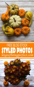 November 2017 Free Styled Stock Photos - Download my FREE styled stock photographs for your blog. Sign up for my email newsletter to get new photos every month. Along the way, learn tips for Lightroom, Photoshop, and other tutorials to make your own photographs outstanding. #photog #photography #photogs #phototips #photographytips #styledstock #camera #nikon #canon #images #pictures http://letgoofbeingperfect.com//category/photography-bloggers/