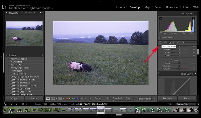 Lightroom cropping and rotating tutorial let go of being perfect lightroom cropping rotating how to use lightroom to crop and rotate your blog ccuart Images
