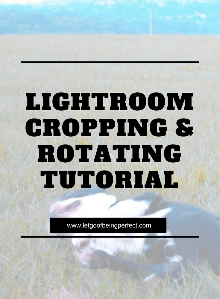 #Lightroom Cropping & Rotating - how to use Lightroom to crop and rotate your blog photos. A series of step-by-step tutorials for Adobe Lightroom that show you how to make your blog #photographs even better. Sign up for the email newsletter to get new #photos every month. #photog #photography #photogs #phototips #photographytips #styledstock #camera #nikon #canon #images #pictures More great photography tips, tricks, and other how-to tutorials on the site. http://letgoofbeingperfect.com//category/photography-bloggers/