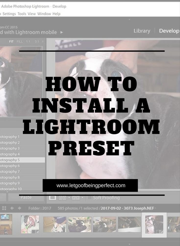 How To Install Lightroom Presets - This simple photography tutorial will teach you how to install a Photoshop Lightroom preset. Learn tips for your blog photography. Photoshop, Lightroom, and Elements ideas to modify and fix up your pictures and images. Explore the web site for more step-by-step tutorials, especially upcycling and refashioning how-tos. Also check out my blogging & photograph tips! http://letgoofbeingperfect.com/